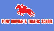 pony driving school