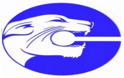 cougar marine usa