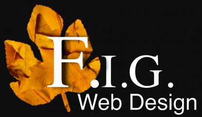 fig web design & marketing