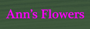 ann's flowers