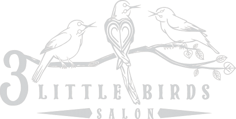 3 little birds salon