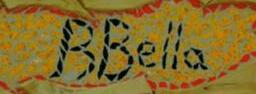 b bella hair design