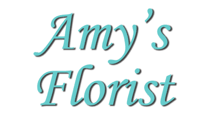 amy's florist & gifts