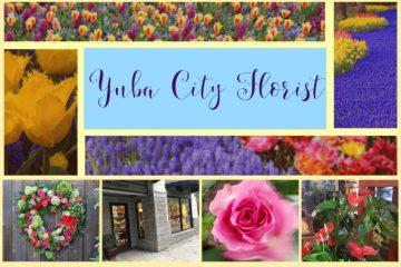 yuba city florist