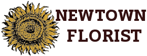 newtown florist of connecticut llc