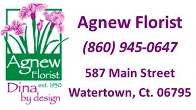 agnew florist-watertown