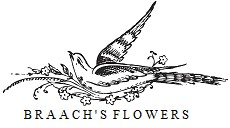 braach's house of flowers
