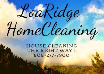 loa ridge home cleaning