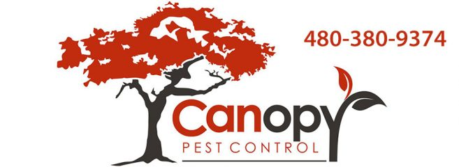 canopy pest control llc