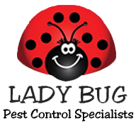 Lady Bug Eco-Friendly Pest Control