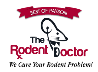 the rodent doctor