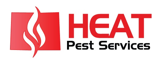 heat pest services - denver bed bug exterminator