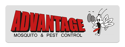 advantage mosquito & pest control