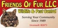 friends of fur