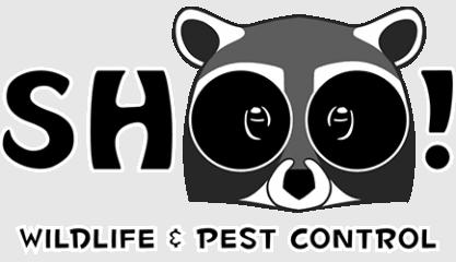 shoo! wildlife & pest control