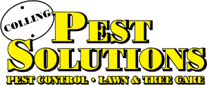 colling pest solutions