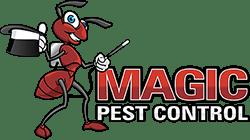magic pest control