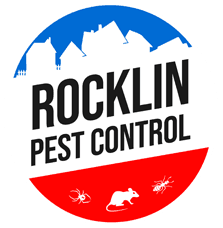 rocklin pest control services