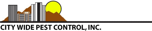 city wide pest control