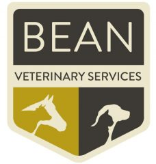 bean veterinary services, pllc