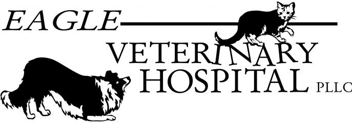 eagle veterinary hospital
