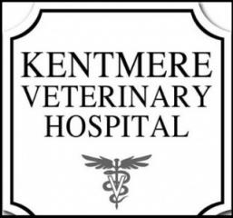 kentmere veterinary hospital