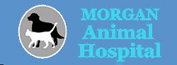 morgan animal hospital