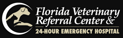 florida veterinary referral center