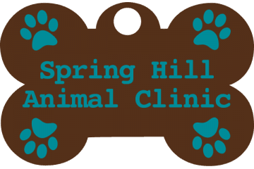 springhill animal clinic