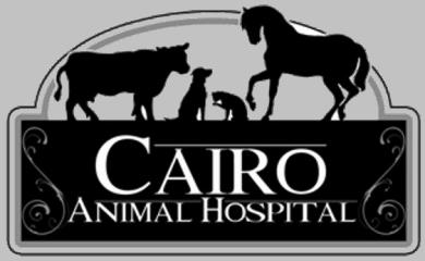 cairo animal hospital
