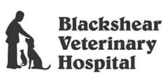 blackshear veterinary hospital