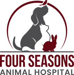 four seasons animal hospital