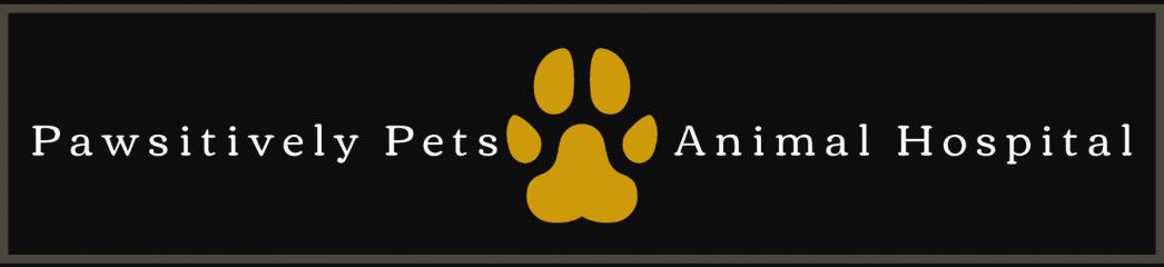 pawsitively pets animal hospital
