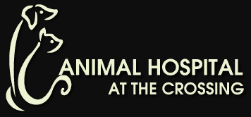 animal hospital at the crossing