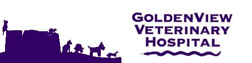 goldenview veterinary hospital