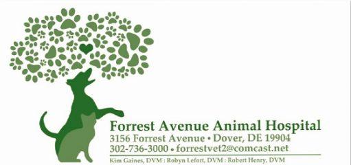 forrest avenue animal hospital