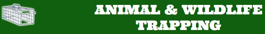 animal & wildlife trapping