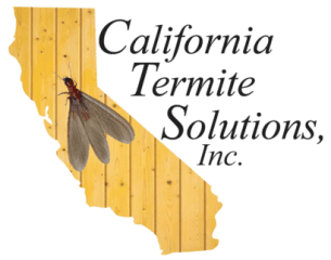 california termite solutions inc