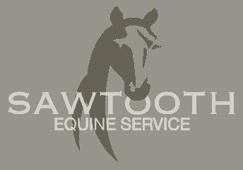 sawtooth equine services