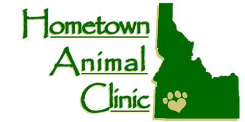 hometown animal clinic
