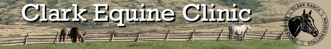 clark equine clinic