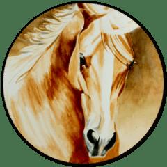 cornerstone equine medical service