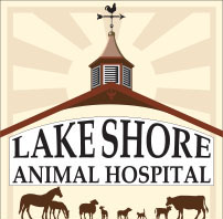 lake shore animal hospital