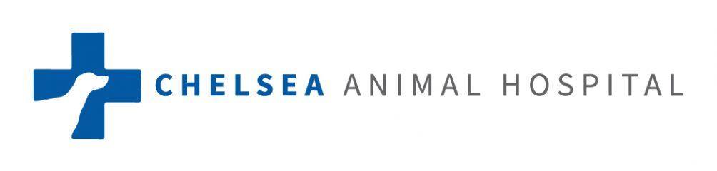 chelsea animal hospital