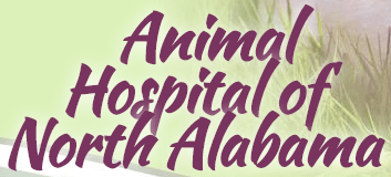animal hospital of north alabama