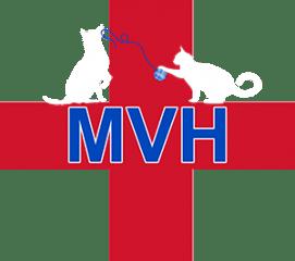 mann veterinary hospital
