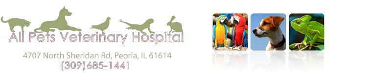 all pets veterinary hospital, pc