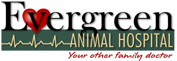 evergreen animal hospital