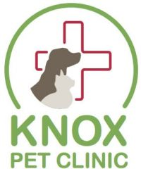 knox pet clinic