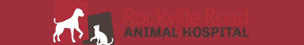 rockville road animal hospital: kovach p dvm